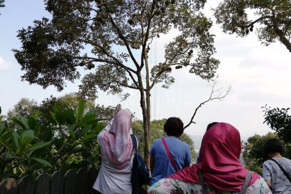 durianfeast-02459EDEA4-0BF7-48C7-822A-293D39320BA2.jpg